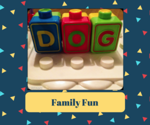 dog daycare, dog baording, lynnwood wa