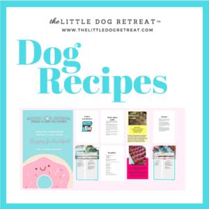dog daycare, dog boarding, dog recipes, lynnwood wa, edmonds wa
